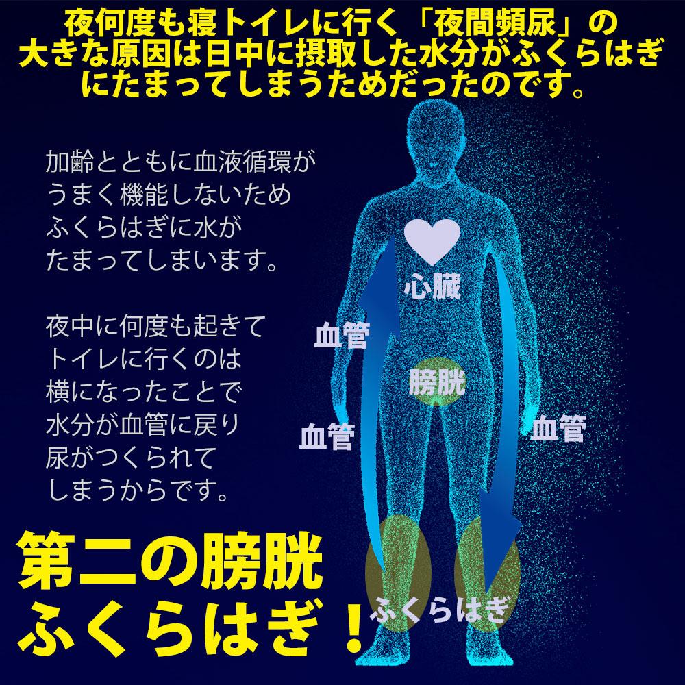 第二の膀胱ふくらはぎ
